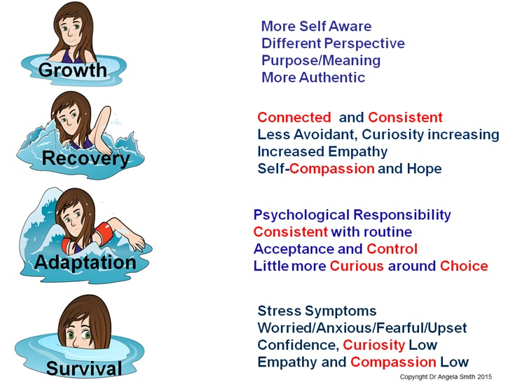 Resilience For Anxious Students >> The Resilience Academy Adapt Faster Ltd